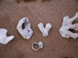 love spelled out in coral