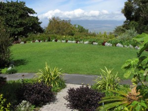 grassy area for weddings at Kula Botanical Gardens