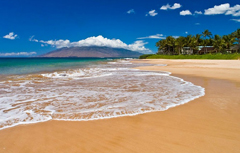 sandy beach near maui condo kamaole beach royale